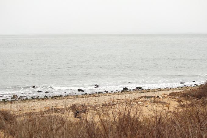beach-mntk
